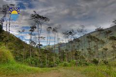 nurkowanie-travel-pl-112.jpg (www.nurkowanie.travel.pl) Tags: indonesia places papua baliem