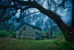 House in the Woods (Jon Dickson Photography) Tags: morning autumn trees summer cold tree fall abandoned fog forest sunrise season illinois ancient branch foggy eerie spooky bestphoto