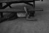 sleeping under a bench (Nashville Street Photography) Tags: ricohgrd ricohgrdigital ricohgrdi ricohgrd1 nashvilletn nashville tn tennessee musiccity streetphotography bw bnw bnwstreet bnwstreetphotos bnwstreetphotography streetphotographer streetphotographergallery nashvilletennessee