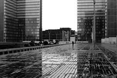 By crossing the deserted space (pascalcolin1) Tags: paris13 bnf pluie rain reflets reflection desert deserted photoderue streetview urbanarte noiretblanc blackandwhite photopascalcolin