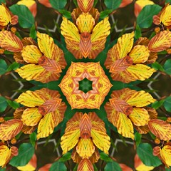 Kaleido Abstract 1585 (Lostash) Tags: art edited abstract patterns symmetry shapes kaleidoscopes