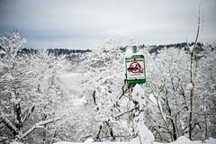 It dumped (Ben McLeod) Tags: dof iheartbigdumps oregon portland sellwood sellwoodbluff winterstorm snow
