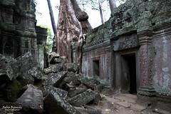 Tempio di Ta Phrom - Cambogia (Fabio Bianchi 83) Tags: cambogia cambodia asia southeastasia sudestasiatico viaggio viaggiare travel taphrom giungla jungle siemreap