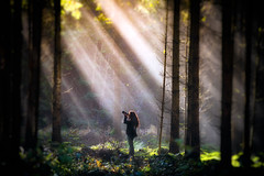 Photographers Delight (Bokehschtig (ON/OFF)) Tags: rays raysoflight forest forestscape photographers photographer sun sunlight sunbeam sunrays woman women mysteriouis mood atmosphere sony sonya7 sonya7ii sonya7markii sonya7m2 canonef7020028lisiiusm woodland woods timber timberland fall autumn herbst wald bume trees treemendous tree lightbrakes