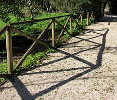Cerca e sombra na Quinta Real (Américo Meira) Tags: portugal caxias quintareal cerca sombra