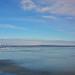 Winter scenery ,lake Balaton