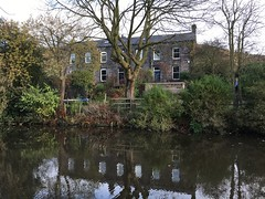 House by Canal, Todmorden, Yorkshire (arrancat) Tags: reflection todmorden uk town market valley upper calder house england public old sign west architecture yorkshire building text stone structure classic weathered victorian village calderdale window parish 2016 trees winter autumn canal waterway water remote rural video