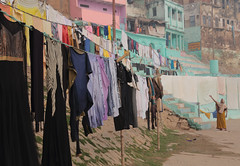 Laundry Day (peterkelly) Tags: digital canon 6d india asia varanasi ghats ghat woman laundry hanging washing gangesriver blue drying clothes gadventures essentialindia uttarpradesh