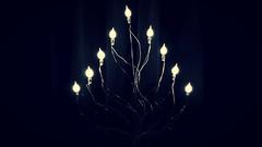 Merry Christmas (❀ Rosemarie Christina ❀ [Slowly catching up]) Tags: christmas christmaslights happyholidays december lights merrychristmas monochrome mono flickrelite