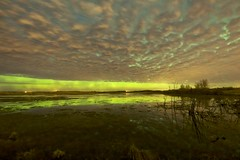 clouds in the water (John Andersen (JPAndersen images)) Tags: 6d alberta aurora canon green madden night pond reflections sky stars wild