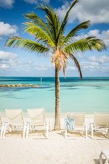 Bahamas-054.jpg (ajdoudt) Tags: patrick sun blue ocean beautiful palmtree bahamas roper sunny green wedding vacation shannon tropical shanny