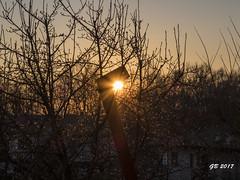 tramonto (gbistoletti) Tags: italia lombardia provinciadivarese albusciago boschi tramonti