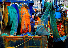Scotland West Highlands Campbeltown a fisherman mending the net of an Atlantic fishing trawler 3 July 2016 by Anne MacKay (Anne MacKay images of interest & wonder) Tags: scotland west highlands campbeltown dock docks fisherman crewman atlantic fishing frawler xs1 3 july 2016 picture by anne mackay