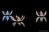 Lily pond (Sockenhummel) Tags: botanischergarten botanischergartenberlin christmasgarden christmasgardenberlin fuji x30 fujifilm finepix fujix30 weihnachten christmas lichtkunst nacht night nachtaufnahme nightshot seerosen waterlillies see lake beleuchtung berlin