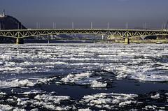 frozen (szlavid) Tags: frozen danube duna budapest hungary nikon d7000 winter river city bridge ice nikkor 50mm 18g
