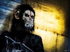 Monkey war (Karl.T-Enigma) Tags: 24105 canon monkey portrait light studio flash masque mask cinéma shoot movie eos sombre métal arms arme army 6d ff zoom lens soe surrealiste