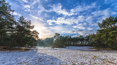 Soesterduinen (WvB Photography - The Sky Is The Limit) Tags: weslyvb weslyvanbatenburg pentax pentaxk5 k5 sigma 1020 ex dg landscape soest soesterduinen winter