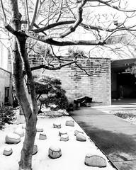 Noguchi Garden (fengtoutou) Tags: museum isamunoguchi sculpture