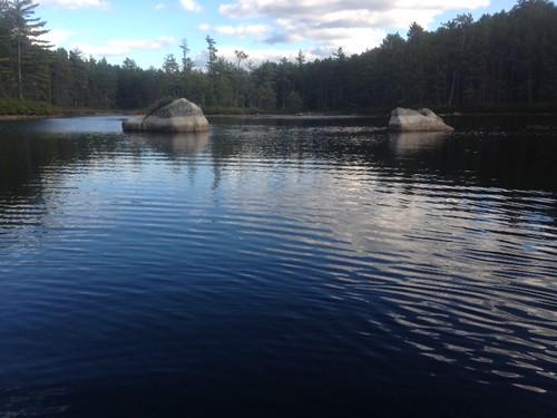 Rocky Pond - www.amazingfishametric.com