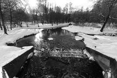 DSCF0969 (Vladimir Glebov) Tags: moscow park winter fujixpro2 xf1024