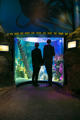 (Luurankorotsi) Tags: people silhouette aquarium couple holdhands holdinghands