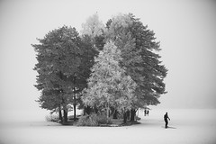 Almost whiteout condition (JoachimBakken) Tags: sognsvann oslo frozen ice snow lake