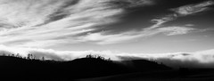 Hillside II _ bw (Joe Josephs: 3,166,284 views - thank you) Tags: california californiacoast fineartphotography sky travel travelphotography joejosephs landscapes outdoorphotography â©joejosephs2017 blackandwhitephotography blackandwhite panoramas panoramic pasorobles countryside ©joejosephs2017 rural hillside hills naturephotography landscapephotography land californialandscape outdoors hiking westcoast