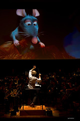 Ciné-concert Ratatouille Presentation licensed by Disney Concerts © All rights reserved (orchestre national de lille (officiel)) Tags: disney ludwig wicki onl orchestrenationaldelille ugoponte nordpasdecalais lille musiciens nouveausiècle soloiste solo hugoponte classical repertoire music photographe symphonie theatre 2014 nikon d4 symphony canon orchestra opera france photography passion instruments rehearsal photo soloist conductor score © contemporary violin cello alto concerthall doublebase flute bassoon hautbois frenchhorn trumpet trombone tuba timpani percussion harp piano