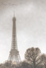 La Tour Eiffel (Di Gutti (diegogutierrez79@gmail.com)) Tags: paris tower fog canon landscape torre tour eiffeltower toureiffel torreeiffel niebla hdr champsdemars gettyimages 1889 urbanlandscape paisajeurbano foggyday gustaveeiffel campodemarte tamron18270 diegogutirrez canoneos70d diaconniebla