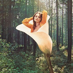 Girl of forest (Mariano Peccinetti Collage Art) Tags: new trip flower girl collage forest vintage 60s surrealism acid surreal retro lsd psycho collageart dreams 70s dada surrealist meditation dope cutandpaste dmt psychedelicart vintageart collageartist peccinetti collagealinfinito marianopeccinetti
