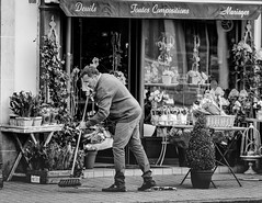 Sweeping! (tim-wolverson) Tags: street people blackandwhite plants man france monochrome streetphotography florist normandie normandy sweeping eure shopkeeper leneubourg