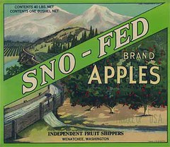 """Sno Fed • <a style=""""font-size:0.8em;"""" href=""""http://www.flickr.com/photos/136320455@N08/21480327311/"""" target=""""_blank"""">View on Flickr</a>"""