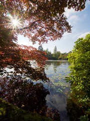 Sheffield Park, East Sussex. (Splat Photo) Tags: park autumn trees lake nature water star sheffield olympus national acer trust pro f22 starburst 714 em1 714mm 714f28pro 714f28