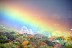 Autumn Pot O' Gold (Katrin Ray) Tags: trees sky sun toronto ontario canada rain rainbow october colours magic rosedale rainbowwonder tiltshift dreamscapesoftoronto katrinray autumnpotogold