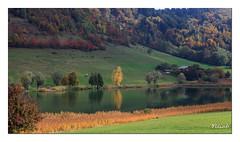 Lac de la Thuile - Bauges
