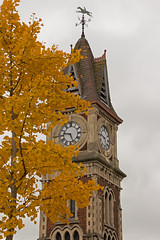 that time of year (neals pics) Tags: autumn tree history fall clock leaves yellow grey cloudy victorian clocktower newmarket highstreet autumnal image73100 100xthe2015edition 100x2015