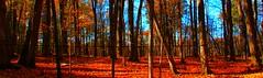 Maple run (SamSpade...) Tags: blue autumn orange black fall maples tubing 6260 576 151023 maplerun