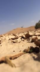 (almadiksa56) Tags: بر طلعة فن امطار طبيعة كشتة شعيب احتراف سيول ملهم