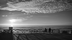 (thierrylothon) Tags: fujifilm fujixpro2 fujinonxf23f2rwr monochrome noirblanc aquitaine gironde lacanau ciel paysage personnage océan phaseone captureonepro c1pro publication flickr fluxapple lumière france