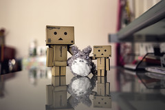 Best Friends Forever (Daniel E Lee) Tags: perth summer australia product stilllife bokeh bokehlicious color vivid canon canon6d 6d fullframe sigma naturallight ambientlight photosbydlee photography photoshop lightroom canon35mmf2is canonef35mmf2is 35mm danbo danboard totoro meneighbortotoro bestfriends bestfriendsforever bff