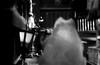 談話 (talking) (Dinasty_Oomae) Tags: aires アイレス aires35 アイレス35 aires35iiia アイレス35iiia 東京都 東京 tokyo 千代田区 chiyodaku 秋葉原 akihabara 柳森神社 yanagimorishrine タヌキ 狸 racoondog 神社 shrine 白黒写真 白黒 bw blackwhite blackandwhite monochrome outdoor