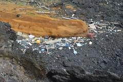 plastic pollution on beach at Ka Lae, Hawaii (David A's Photos) Tags: ka lae coast line photography january 2017 hawaii big island