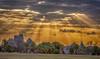 Cloud light over San Antonio, TX (ronaldeorosz) Tags: antenna beam palmtree city building ray rays cloud light shining sanantonio texas sunset sunlight handheld d610 nikon