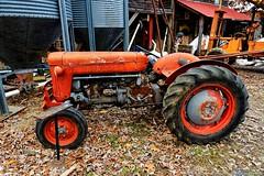 Old Tractor (Paul's Captures (paul-mashburn.artistwebsites.com)) Tags: tractor oldtractor johndeere bronco valentinemills ferguson fergusontractor