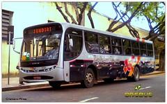 8818 Rápido Luxo Campinas (Crisbus Brasil) Tags: crisbusbrasil rápidoluxocampinas caio jundiaí ônibus bus buses