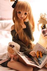 Kotoriii ~ (Targuerys) Tags: kotori love live dollfie dream smartdoll mirai
