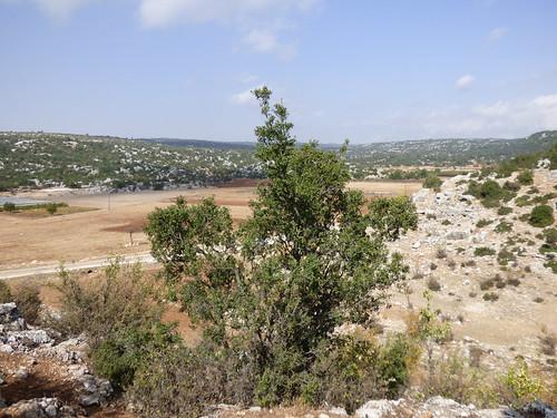 Olba - aqueduct view