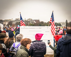 2017.01.21 Women's March Washington, DC USA 2 00151