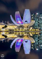iLIGHT Marina Bay 2017 (kenneth chin) Tags: artsciencemuseum ilightmarinabay2017 nikon d810 nikkor 2470f28g singapore asia city yahoo google