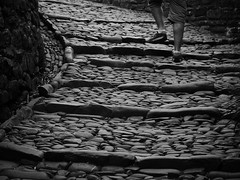 Climbing Clovelly (Suzanne015) Tags: blackandwhite texture stone village steps cobbles clovelly